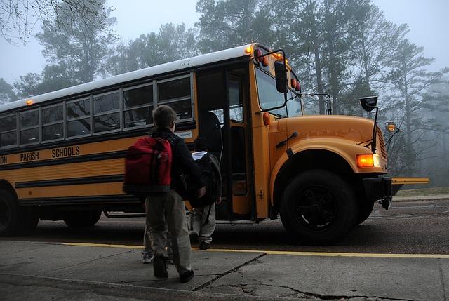 O que precisa para trabalhar com transporte escolar